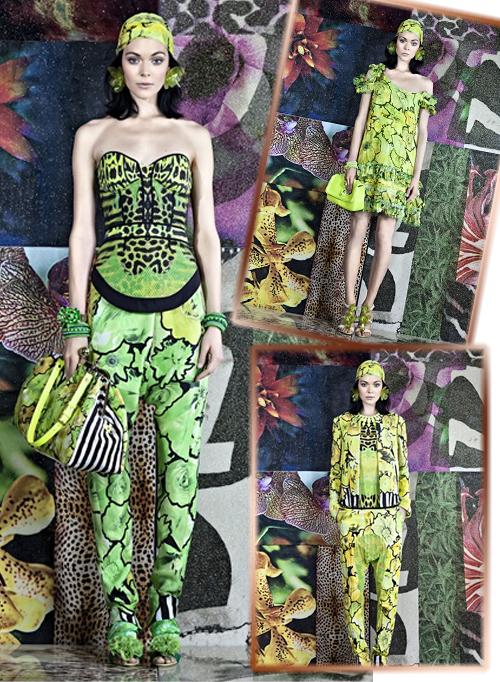 одежда из коллекции Roberto Cavalli весна-лето 2012 фото