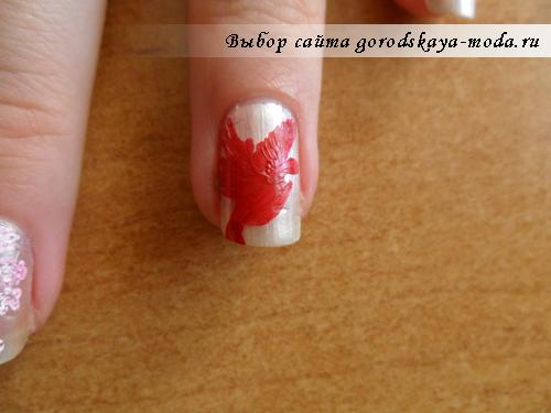 крылья красного попугая