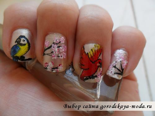 рисунки на ногтях попугаи фото