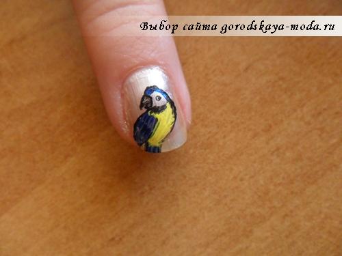 рисуем попугайчика на ногтях