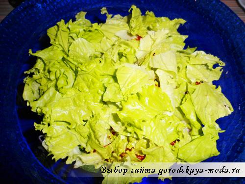 листья салата фото