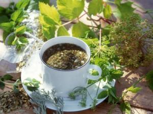 чай с травой фото
