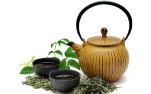 Польза зеленого чая при беременности